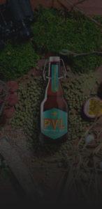 fond-pvl-printemps21_mobile-sombre